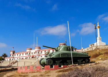 CHI10933AW Tank in  the Santa Lucia Park, La Serena, Coquimbo Region, Chile