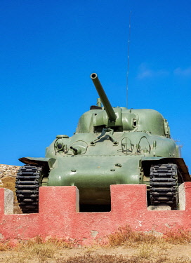CHI10934AW Tank in  the Santa Lucia Park, La Serena, Coquimbo Region, Chile