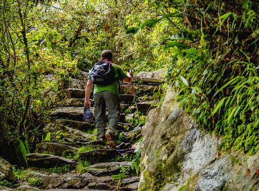PER34261AW Hiker on the trail to the Machu Picchu Mountain, Cusco Region, Peru