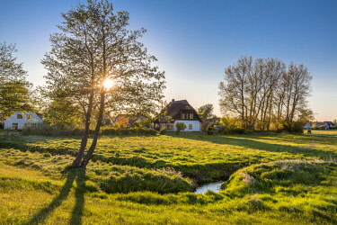 GER10540AW Thatched house at sunset, Vitte, Hiddensee island, Mecklenburg-Western Pomerania, Germany