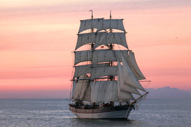 IBLEBA03986624 Evening sailing with a two-master in full sail at the Hanse Sail 2014, Warnemunde, Mecklenburg-Western Pomerania, Germany, Europe