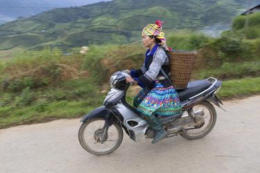VIT1456AW A woman in traditional costume rides a mototbike, Tu Le,  Yen Bai Province, Vietnam, South-East Asia