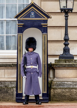 ENG15187AW Guard at Buckingham Palace, London, England, United Kingdom