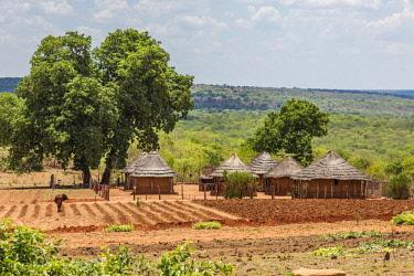 ZIM2703AW Africa, Zimbabwe, Matabeleland north. A traditional rural homestead.