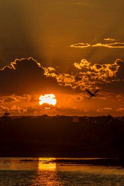 ZIM2710AW Africa, Zimbabwe, Matabeleland north. Sunset over the Zambezi river near to Victoria Falls
