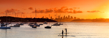 ARDASE000559 Panoramic view with paddleboarders and sailboats at sunset at Watsons Bay, Sydney, New South Wales, Australia