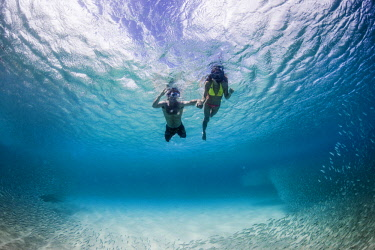 ARDASE000951 Underwater view of couple swimming with tropical fish, Waimea, on North Shore of Oahu, Hawaii, USA