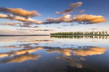 CLKFV74426 Fir trees and clouds reflecting on the suface of Hovsgol Lake at sunset. Hovsgol province, Mongolia.