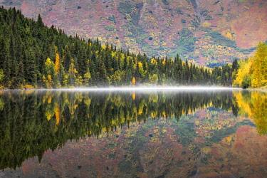 CLKMG71889 Kenai peninsula, Alaska, United States of America