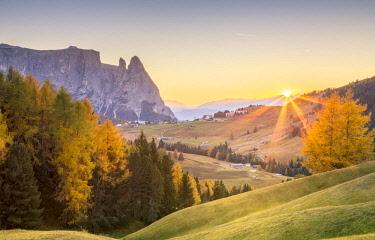 CLKST71727 Alpe di Siusi, South Tyrol, Italy