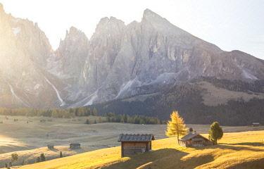 CLKST71742 Alpe di Siusi, South Tyrol, Italy