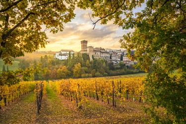 CLKST74367 Levizzano Rangone, Modena Province, Emilia Romagna, Italy