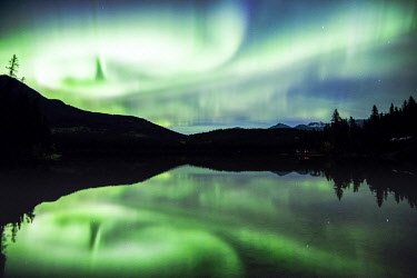 CAN3263AW Northern lights (Aurora Borealis), Jasper National Park, Alberta, Canada