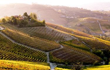 ITA11418AWRF Serralunga d'Alba, Langhe, Piedmont, Italy. Autumn landscape with vineyards and hills.