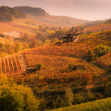 ITA11426AW Langhe, Piedmont, Italy. Autumn landscape with vineyards and hills.