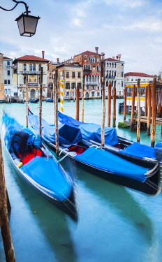 ITA11463 Italy.Veneto.Venice. Gondolas moored on the Gran Canal with palaces in the background.