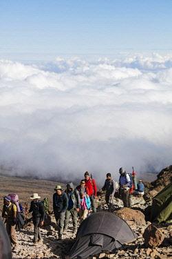 TZ3560 East Africa, Tanzania, Kilimanjaro (5895m) National Park, Unesco World Heritage site, hikers arriving at Barafu campsite