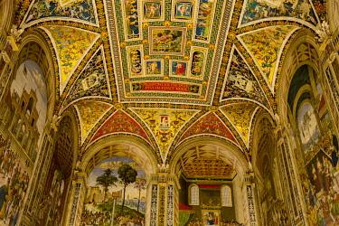 ITA11521 Siena, Tuscany, Italy. The interior of the Piccolomini Library within the Siena Duomo.