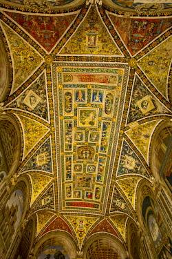 ITA11522 Siena, Tuscany, Italy. The interior of the Piccolomini Library within the Siena Duomo.