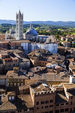 ITA11516 Siena, Tuscany, Italy. Looking across to the Siena Duomo from the Bell Tower.