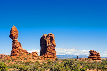 USA, Utah, Moab. Arches National Park.