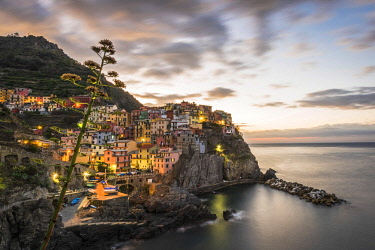 ITA11623AW Europe, Italy,Liguria. Cinque Terre, Manarola at dawn.