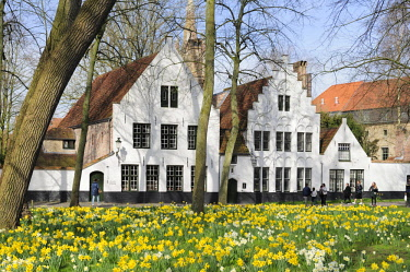 HMS3082388 Belgium, West Flanders, Bruges, Beguinage Park and Vine Monastery