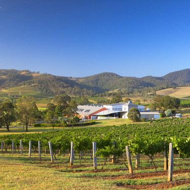 AUS2976AW Ben Ean Wine Estate, Hunter Valley, New South Wales, Australia