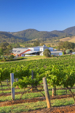 AUS2978AW Ben Ean Wine Estate, Hunter Valley, New South Wales, Australia