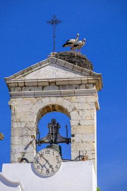 HMS2563041 Portugal, Algarve region, Faro, old town, storks nesting on Arco da Vila, 19th century neoclassic arch