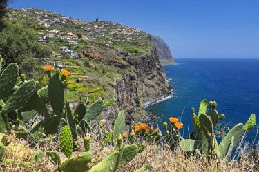 HMS2006997 Portugal, Madeira island, south coast, view from the mirador above Ribeira Brava