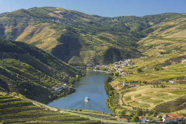 HMS2825307 Portugal, Upper Douro Valley and its vineyards listed as UNESCO World Heritage, surroundings of Pinhao, cruise on the Douro river