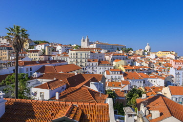 HMS2858405 Portugal, Lisbon, view over the rooftops of the Alfama district from the terrace of Largo das Portas do Sol