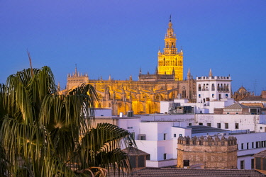 HMS2432745 Spain, Andalusia, Seville, Santa Cruz district, the Cathedral and the Giralda