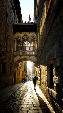 HMS2586097 Spain, Catalonia, Barcelona, Barri Gotic (Barrio Gotico, Gothic Quarter), Carrer del Bisbe (Bishop's street), neo-Gothic bridge Pont del Bisbe (Bishop's bridge)