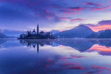 CLKSS77605 Small island on lake Bled Europe, Slovenia, Bled