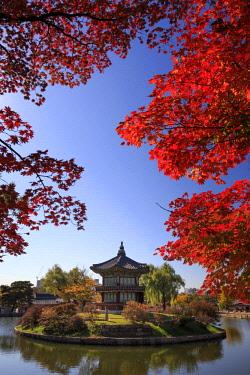KR01345 South Korea, Seoul, Gyeonbokgung Palace