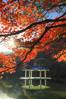 KR041RF South Korea, Jeolla Do, Naejangsan National Park, Naejangsan Pond and Wuhwajeong Pavillion