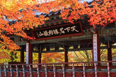 KR02187 South Korea, Jeolla Do, Naejangsan National Park, Naejangsa Temple