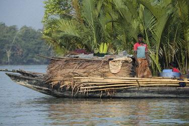 AS03CMI0033 Bangladesh, Sundarbans National Park. Waterways between Harbaria and Charaputia. Typical prawn (chinar) fisherman in mangrove and nipa palm (aka Golpata) habitat.