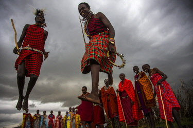 KEN10889AW Kenya, Maasai Mara, Aitong; William ole Pere's boma. Maasai men dance and leap into the air as women from their village sing and dance.