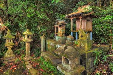 AS15BJY0172 Japan, Nara. Byo-Do-Ji Kasuga Shinto Shrine.