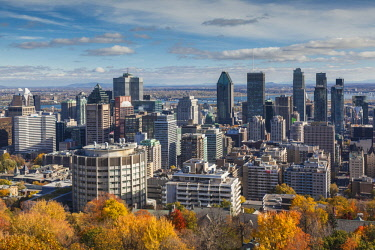 CA04297 Canada, Quebec, Montreal, elevated city skyline from Mount Royal, autumn