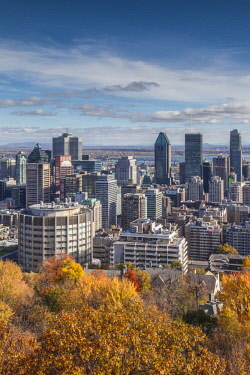 CA04298 Canada, Quebec, Montreal, elevated city skyline from Mount Royal, autumn