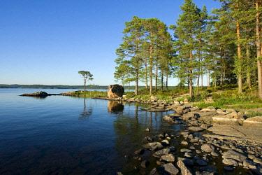 NIS00055873 Lake and shoreline in evening light, Sweden, Sweden