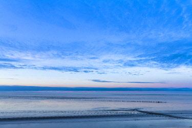 NIS00061357 Mud flat and sky at the Wadden Sea coast of Friesland, The Netherlands, Friesland, Bandpolder, Lauwersmeer National Park