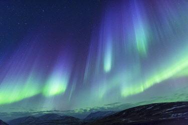 EU14EGO0128 Europe, North Iceland, Near Akureyri. Northern Lights glowing.