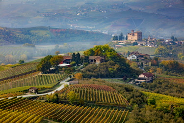EU16BJN0718 View over vineyards toward Castello di Grinzane Cavour, Langhe Region, Piedmont, Italy