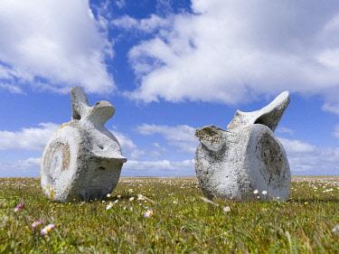 SA09MZW0772 Whale vertebrae on Bleaker Island.  Falkland Islands