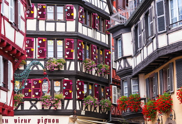 FRA10229AW Half-timbered houses of the old town of Colmar, Alsatian Wine Route, France